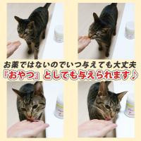 (がん、皮膚病、アレルギー、血尿血便に)猫用サプリメント ビガープラス プレミアムアルファ|pmall|05