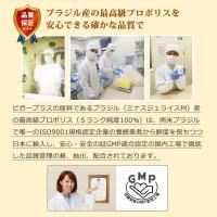 (がん、皮膚病、アレルギー、血尿血便に)猫用サプリメント ビガープラス プレミアムアルファ|pmall|08