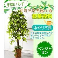 観葉植物 人工 室内 大型 おしゃれ 人工観葉植物 大型 グリーンインテリア