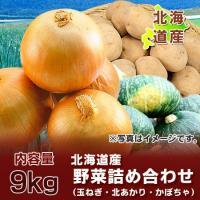 北海道産  野菜セット  じゃがいも(きたあかり)・玉ねぎ・かぼちゃセット (約9キロ詰め)  大地...