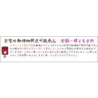 【送料250円〜】モロッコバブーシュ*マルチ|porch-drop|05