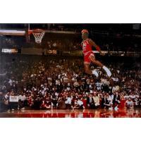 ポスター:マイケル・ジョーダン Michael Jordan サイズ:91.5×61cm フレーム(...