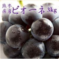 ピオーネは、黒葡萄の一種で、ピヨーネと呼ばれることもあります。 名前の由来は、「開拓者」という意味の...