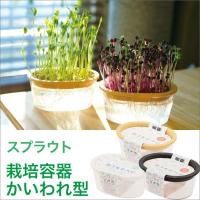 スプラウト 栽培容器 かいわれ型 水耕栽培 有機種子 発芽豆 家庭菜園
