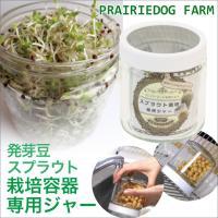 スプラウト 栽培容器 専用ジャー もやし型 豆 水耕栽培 有機種子 発芽豆 家庭菜園
