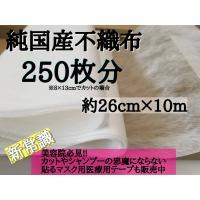 使い捨て マスク フィルター 250枚分 純国産不織布