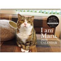 2020年人生はニャンとかなる!カレンダー (ネコ 猫 ねこ 好き 愛猫家 ひふみんのニャンぶらり 加藤一二三 BSプレミアム テレビ)