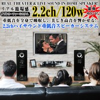 REAL THEATER & LIVE SOUND IN HOME SPEAKER!  リア...