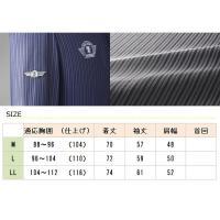 SALOON EXPRESS(サルーンエクスプレス) シャドーストライプハイネックシャツ3色組 AO-0027