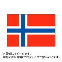 国旗 ノルウェー 70×105cm ポンジ flag-0129