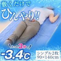 白くまきぶん 流氷マット シングル 2枚組 90x140cm