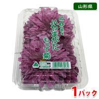 国内最大の食用菊の産地、山形県産の食用菊「もって菊(もってのほか)」です。 紫色の大輪種「もって菊」...