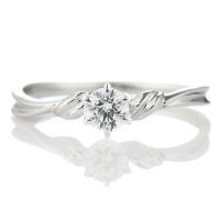 婚約指輪 エンゲージリング  シンプルラインで指もスッキリ エンゲージリング明るく元気いっぱいのあな...