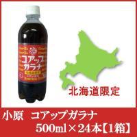 2箱毎に1配送料(450円)が掛かります。  ★発売53年を迎えた北海道を代表するガラナ飲料です。 ...