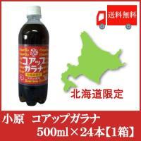 ★発売53年を迎えた北海道を代表するガラナ飲料です。 ★強めの炭酸と、すっきりとした甘さが癖になる道...