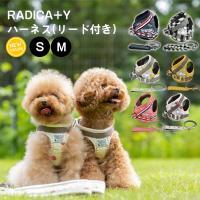 セール SALE 犬 ハーネス ラディカ RADYハーネス(リード付き) S Mサイズ 胴輪 メール便可