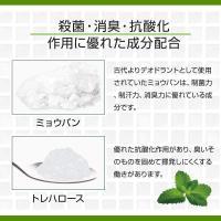 制汗剤 メンズ 男 加齢臭 対策 頭皮 臭い 専用スプレー 薬用DEO 35 PLUS+ (100ml×2本) ドクターデオドラント|ramsmarks|05