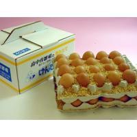 卵 鶏卵 卵かけご飯 普段使い卵40個入(特撰吟味夕映卵)
