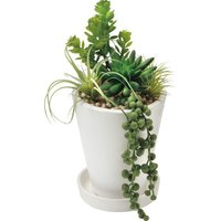 GREENPARK 多肉植物ミックス/皿付きプランター 造花 B 室内装飾品 花 グリ-ン ア-トアレンジ花 PRGR-0802E 代引不可
