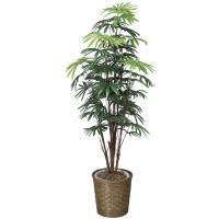 アートフラワー 人工観葉植物 光触媒 光の楽園 シュロチク1.6 鉢変更(代引き不可)