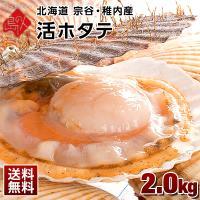 ◆ 商品内容 ホタテ貝(殻付き)×2.0kg(9〜12枚前後入り)  ※自然のものですので個体差によ...