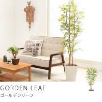 観葉植物 インテリア フェイク フェイクグリーン おしゃれ リアル 光触媒観葉植物 ゴールデンリーフ Sサイズ 送料無料