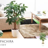 観葉植物 インテリア フェイク フェイクグリーン おしゃれ リアル 光触媒観葉植物 パキラ Sサイズ