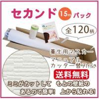 壁紙 のり付き クロス のりつき サンゲツ SP2149 -S 15 SP-9946 白 ホワイト ...