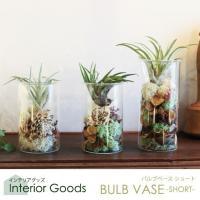 【BULB VASE】バルブベース 水栽培でできるフラワーベース。 サイズ:直径:8cm、高さ:13...