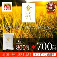 宮城の風土が生んだ、輝く玄米。  宮城県産 金のいぶき 高機能玄米 1キログラム 送料無料 28年産...