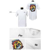 グリズリー GRIZZLY Tシャツ BREAK THROUGH S/S T-SHIRTS 半袖 TEE メンズ レディース 全2色 S-L