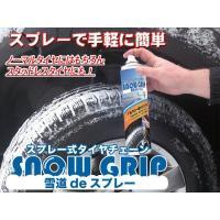 【1缶 容量600ml】    【注意事項】  本商品は予期せぬ積雪、凍結時に緊急に使用するもので、...