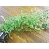 FB フェイクグリーンハンキング お手入れ不要  観葉植物 プレゼント