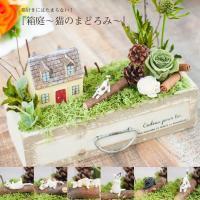 プリザーブドグリーン 箱庭 猫のまどろみ プリザーブドフラワー 猫 ネコ キャット 誕生日 ギフト 送料無料 あすつく対応