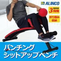 アルインコ (ALINCO) パンチングシットアップベンチ EX140 トレーニングチューブ付き(腹筋 背筋 ボクシング エクササイズ ダイエット 腹筋マシン ) (送料無料)