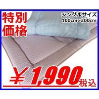 サイズ:シングルサイズ 100cm×200cm 中綿重量:2.5kg 中綿:ポリエステル100% 中...