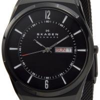 SKAGEN スカーゲン メンズ 腕時計 SKW6006 Aktiv Mesh Titanium ア...