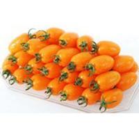 強いコクと甘みの中に酸味がミックスされた味わいのミニトマト。果重18〜23g、糖度9〜10度、裂果が...