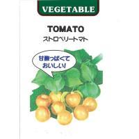 食用ほおずき ストロベリートマトの種 小袋 (約30粒)