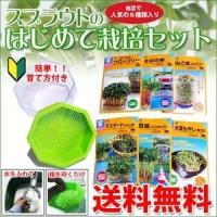 スプラウト 栽培セット はじめて栽培セット (スプラウト6種×栽培容器付き)