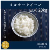 新米 お米20kg ミルキークィーン白米  令和元年度福島県産
