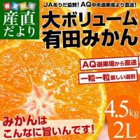 送料無料 和歌山県から産地直送 JAありだ 有田みかん 大玉 4.5キロ(35玉前後)蜜柑 ミカン