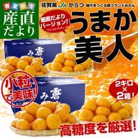 佐賀県より産地直送 JAからつ 小粒うまか美人 高糖度みかん 2Sから3Sサイズ 約2キロ×2箱 (合計80玉前後)送料無料 U・M・K美人 蜜柑 温州ミカン