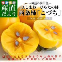 島根県JAしまねから産地直送します。  名称:柿・西条柿 原産地:島根県 内容量:5キロ  平田の西...