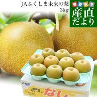 福島県JA ふくしま未来から産地直送します。  名称:JAふくしま未来の梨 内容量:約5kg(10か...