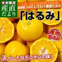 愛媛県 JAにしうわより産地直送します。  名称:はるみ Mから3Lサイズ 内容量:5キロ(18から...