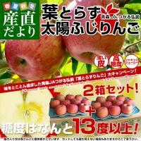 青森県JAつがる弘前より産地直送します。  商品名:りんご 内容量:約3kg(9から13玉)×2箱 ...