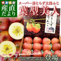 青森県JAつがる弘前から産地直送します。  名称:りんご(サンふじ) 原産地:青森県 内容量:約3キ...