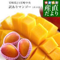 宮崎県JA宮崎中央より産地直送します。  名称:宮崎マンゴー 内容量:1キロから1.3キロ(2玉から...