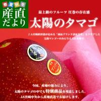 宮崎県より産地直送でお届けします  名称:マンゴー「太陽のタマゴ」最高級AA品 内容量:最高級AA品...